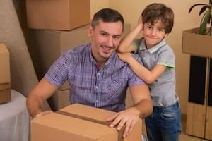 Arlington Heights family law attorney parental relocation